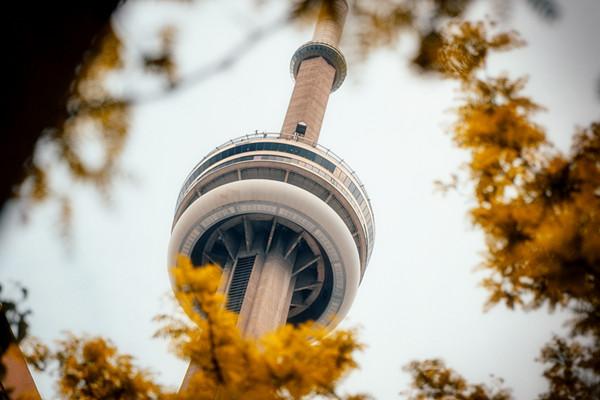加拿大建筑专业排名